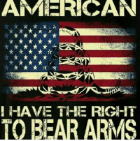AM CAN  HAVE THE RIGHT  TO BEAR ARMS Love the image and message. Feel free to share 🇺🇸☺🇺🇸