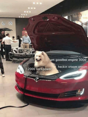 12000 Borkpower!?: am goodboi engine 3000  heckin vroom vroom  12000 borkpower 12000 Borkpower!?