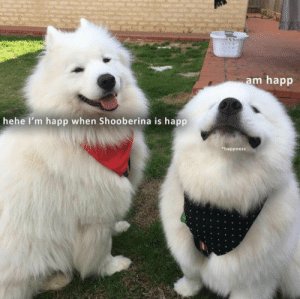 Hehe, When, and Happ: am happ  hehe I'm happ when Shooberina is happ  happness