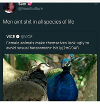 Yoo thats sexist 😁 . . . . Follow @hoedity(me) for more 💣💥: am  @hoodculture  Men aint shit in all species of life  VICE Φ @VICE  Female animals make themselves look ugly to  avoid sexual harassment: bit.ly/2ttG9AB Yoo thats sexist 😁 . . . . Follow @hoedity(me) for more 💣💥