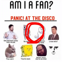 I don't like them but I don't really dislike them: Am I A FAN?  PANIC! AT THE DISCO  Get that trash away  inion  Lmao who?  No tha  from me pls  y dude  Sweet Jesus,  They're dank  Thev aioht  that is mv sheit I don't like them but I don't really dislike them