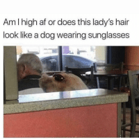 Af, Funny, and Lol: Am I high af or does this lady's hair  look like a dog wearing sunglasses Lol 🤔