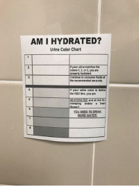 I've printed the sign, boss! Just ran out of color ink.: AM I HYDRATED?  Urine Color Chart  f your urine matches the  colors 1, 2, or 3, you are  2  ted.  Continue to consume fluids at  the recommended amounts  If your urine color is below  the RED line, you are  DEHYDRATED and at risk for  cramping andlor a heat  YOU NEED TO DRINK  MORE WATER I've printed the sign, boss! Just ran out of color ink.