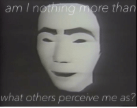 perceive: am I not  hing more than  what others perceive me as?
