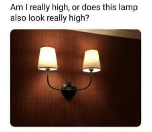 Bruh, Memes, and Lamp: Am I really high, or does this lamp  also look really high? Uhhhhh.quit campin bruh. via /r/memes https://ift.tt/2KFXpIC