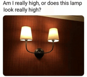 Dank, 🤖, and Lamp: Am I really high, or does this lamp  look really high? I don't see it.