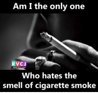 Memes, Smell, and Only One: Am I the only one  RVCJ  WWW, RVC J.COM  Who hates the  smell of cigarette smoke Anyone else? rvcjinsta