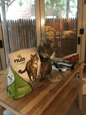 Food, Duck, and Free: AM  MED  LK  nulo  freestyle  R  nulo  freetyle  GRAIN-FREE  INDOOR CAT  duck&lentils recipe  NOURIHURE OUA  CAL FOOD  NET WTS ID My cat couldn't wait to point out the similarities.
