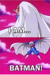 Batman, Lol, and Memes: AM000  BATMAN! Lol xD  ~ One Piece The New Era