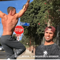 9gag, Memes, and Weird: Amalfi Dr  STOP  @SCOT MATHISON & @RYNOSAURUSPLEX& @DEMIBAGBY @fitbeast presents: When you see people doing weird workout outside. By @scott_mathison_ , @rynosaurusflex & @demibagby - 9gag fitbeast workout