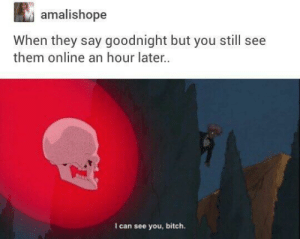 rude: amalishope  When they say goodnight but you still see  them online an hour later.  I can see you, bitch. rude