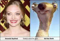 The truth is out chea: Amanda Seyfried TotallyLooksLike.com  Sid the Sloth The truth is out chea