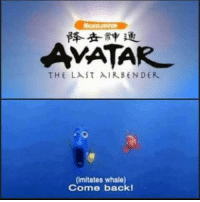 ~ Admin Azula: AMATAR  THE LAST AIR BEN DER  (imitates whale)  Come back! ~ Admin Azula