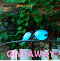 Friends, Memes, and Best: amax  giveaway  res Creator. GIVEAWAY from @greyjackvision : Three 2017 Best Polarized Fishing-Surfing Sunglasses FREE for 3 of our followers , So what to do , look 👇 1.Follow @greyjackvision 2.Like this pic and Tag 2 friends(To increase the chance of winning you can comment as many times as you wish by tagging all your friends) 3. The Winner will be announced on 6:00AM.23th.Oct on @greyjackvision (Winner random)
