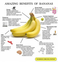 https://t.co/1s3D1DACrN: AMAZING BENEFITS OF BANANAS  Energy  Bananas supply proper  carbohydrates necessary to  replace the muscle  glycogen (muscle sugar) used  Bowel Health  Bananas are high in soluble fiber  which helps stop constipation and  helps to restore and maintain  regular bowel function  Increase happiness  Bananas release a mood  Potassium  High in potassium, bananas help the  body's circulatory system deliver  oxygen to the brain,  regulating substance  called tryptophan which is  converted to serotonin in  : helping maintain  the brain and thus elevates mood  & makes us happier!  regular heartbeat and  proper water balance in  Help Smokers Quit  Bananas  contain  B vitamins and  other minerals  that lessen the  effects of nicotine  withdrawal both  physically and  psychologically  PMS  Bananas contain  vitamin B6. This  vitamin  regulates  blood  glucose  levels  and  helps us in times of  stress and helps to  suppress cranky  moods  Iron  Bananas are rich in iron too,  and can help individuals with  Brain Power  Potassium-packed fruit helps  learning because it makes the pupils  anemia. Iron  rich foods, such  as bananas  help stimulate  production of  hemoglobin in  the blood and  more alert. Students find  that they have more  brain power and do  better on exams when  they eat bananas at  breakfast and lunch.  FACEBOOK.COM/LIVELOVEFRUIT https://t.co/1s3D1DACrN
