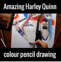 Dank, Amaz, and Drawings: Amazing Harley Quinn  colour pencil drawing LIKE UNILAD Film for more!