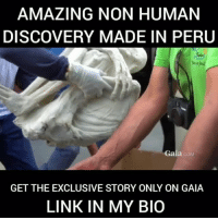 Memes, Money, and News: AMAZING NON HUMAN  DISCOVERY MADE IN PERU  Gaia COM  GET THE EXCLUSIVE STORY ONLY ON GAIA  LINK IN MY BIO http:-bit.ly-2tJMzrm A new anomalous discovery has been unearthed in Peru. Join Gaia's ongoing investigation and decide for yourself if this is proof of a non-human species. Ready to find out your own answers? FREE REPORT!!! http:-bit.ly-2tJMzrm Follow the link in my bio Stay on top of the news: http:-bit.ly-2tJMzrm We can email you when new episodes are posted: http:-bit.ly-GaiaNazcaMailingList . This investigation and research cost us tens of thousands of dollars of our own money. At Gaia, we put our money where our mouth is. We travel the world to bring you exclusive vetted research from real professionals. . Closed Captioning is coming soon for the following languages: Arabic – French – German – Italian – Chinese – Russian – Spanish - Brazilian-Portuguese - Japanese Join Gaia for $0.99 Ad-free and member supported, the world's largest streaming library of conscious media http:-bit.ly-Gaia99toJoin 4biddenknowledge