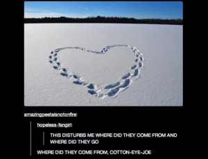 Eye, Joe, and Cotton: amazingpeetaisnotonfire:  hopeless-fangirl:  THIS DISTURBS ME WHERE DID THEY COME FROM AND  WHERE DID THEY GO  WHERE DID THEY COME FROM, COTTON-EYE- JOE Cotton Eye Joe