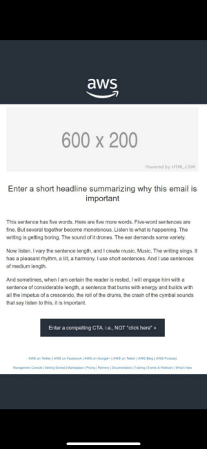Amazon accidentally sent out their email template and it's hilarious!: Amazon accidentally sent out their email template and it's hilarious!