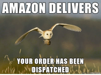 amazons new drone: AMAZON DELIVERS  YOUR ORDER HAS BEEN  DISPATCHED amazons new drone