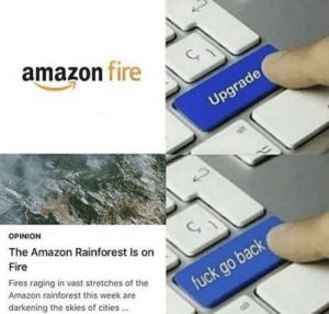 rainforest: amazon fire  Upgrade  OPINION  The Amazon Rainforest Is on  Fire  Fires raging in vast stretches of the  Amazon rainforest this week are  fuck go back  darkening the skies of cities