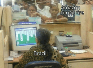 Fire bad: Amazon  forest fire  Brazil  saifNDCST  TEC  EEFER Fire bad
