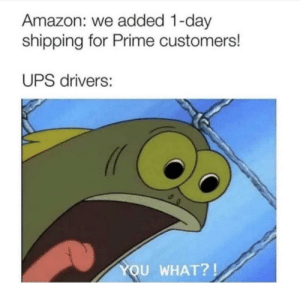 Amazon, Ups, and Chocolate: Amazon: we added 1-day  shipping for Prime customers!  UPS drivers:  YOU WHAT?! Chocolate