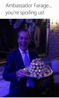 Magic, Dank Memes, and Insanity: Ambassador Farage.  you're spoiling us As if we needed confirmation that meme magic is real... this year has just been insane