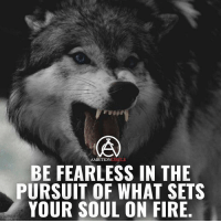Fire, Memes, and Ambition: AMBITION  CIRCLE  BE FEARLESS IN THE  PURSUIT OF WHAT SETS  YOUR SOUL ON FIRE Be fearless! - DOUBLE TAP IF YOU AGREE!