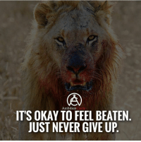 It's ok to feel beaten as long as you don't give up! DOUBLE TAP IF YOU AGREE!: Ambition  Circle  ITS OKAY TO FEEL BEATEN  JUST NEVER GIVE UP It's ok to feel beaten as long as you don't give up! DOUBLE TAP IF YOU AGREE!