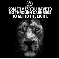 Memes, Ambition, and Circles: AMBITION  CIRCLE  SOMETIMES YOU HAVE TO  GO THROUGH DARKNESS  TO GET TO THE LIGHT. Sometimes you have to go through the darkness before you see the light! - DOUBLE TAP IF YOU AGREE!