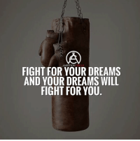 Memes, Ambition, and 🤖: AMBITION  FIGHT FOR YOUR DREAMS  AND YOUR DREAMS WILL  FIGHT FOR YOU Never stop fighting for your dreams! DOUBLE TAP IF YOU AGREE!