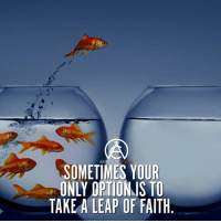 Memes, Ambition, and Faith: AMBITION  SOMETIMES YOUR  ONLY OPTIONJS TO  TAKE A LEAP OF FAITH Sometimes you just have to take a leap of faith! DOUBLE TAP IF YOU AGREE!
