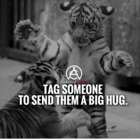 Memes, Tag Someone, and Ambition: Ambition  TAG SOMEONE  TO SEND THEM A BIG HUG Tag someone who needs a BIG Hug right now! DOUBLE TAP AND TAG A FRIEND!