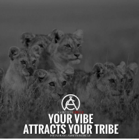 Whos your tribe? Tag them below👇 - DOUBLE TAP IF YOU AGREE!: AMBITION  YOUR VIBE  ATTRACTS YOUR TRIBE  INSTAGRAM IAMBITIONCIRCLE Whos your tribe? Tag them below👇 - DOUBLE TAP IF YOU AGREE!