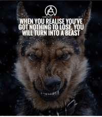 When you realize you've got nothing to lose, you'll begin to succeed in big ways! - DOUBLE TAP IF YOU AGREE!: AMBITIONCIRCLE  WHEN YOU REALISE YOUVE  GOT NOTHING TO LOSE, YOU  WILL TURN INTO A BEAST When you realize you've got nothing to lose, you'll begin to succeed in big ways! - DOUBLE TAP IF YOU AGREE!