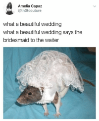 Beautiful, Memes, and Wedding: Amelia Capaz  @thOtcouture  what a beautiful wedding  what a beautiful wedding says the  bridesmaid to the waiter @th0tcouture yes but what a shame, what a shame the poor grooms bride is a whore