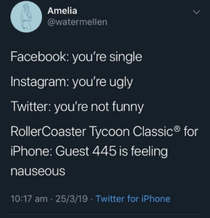 Facebook, instagram and Twitter: Amelia  @watermellen  Facebook: you're single  Instagram: you're ugly  Twitter: you're not funny  RollerCoaster Tycoon Classic  iPhone: Guest 445 is feeling  nauseous  for  10:17 am 25/3/19  Twitter for iPhone Facebook, instagram and Twitter