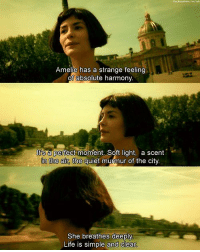 Amélie (2001): Amelie has a strange feeling  of absolute harmony.  a perfect moment. Soft light, a scent  In the air, the quiet murmur of the city.  She breathes deeply  Life is simple and clear Amélie (2001)
