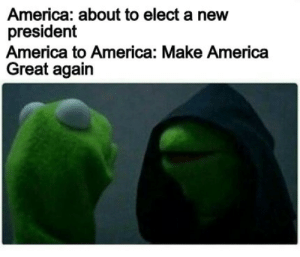 America, Memes, and President: America: about to elect a new  president  America to America: Make America  Great again Kermit Hoodie Memes