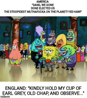 """America, Bad, and England: AMERICA:  """"DANG, WE GONE  DONE ELECTED US  THE STOOPIDEST MUTHAFUCKA ON THE PLANET! YEE-HAW!  ENGLAND: """"KINDLY HOLD MY CUP OF  EARL GREY, OLD CHAP, AND OBSERVE...  ingflpcom Your bad, I'm bad, we're all bad"""