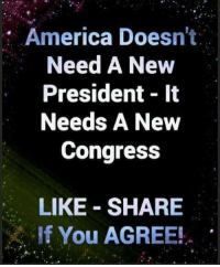 America, Memes, and 🤖: America Doesn't  Need A New  President 1t  Needs A New  Congress  LIKE SHARE  If You AGREE!