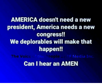 America, Memes, and 🤖: AMERICA doesn't need a new  president, America needs a new  congress!!  We deplorables will make that  happen!!  The Voic  ti  sople  Media Inc.  Can I hear an AMEN