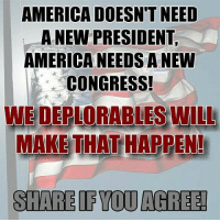 Happenes: AMERICA DOESN'T NEED  A NEW PRESIDENT  AMERICANEEDS A NEW  CONGRESS!  WE DEPLORABLES WILL  MAKETHAT HAPPEN!  SHARE IF YOU AGREE