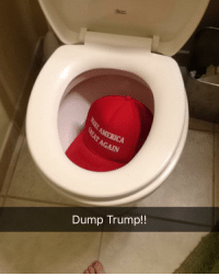 AMERICA  Dump Trump!! where trump belongs. This is my brother's hat, I didn't spend my hard earned money for this shit - Margaret