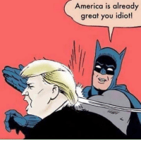 Ha!    (Hat tip to Political Humor and Telling Donald Trump He's Full of Crap (by LeftAction.com)): America is already  great you idiot! Ha!    (Hat tip to Political Humor and Telling Donald Trump He's Full of Crap (by LeftAction.com))