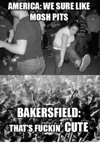 Seriously. You wanna get messed up, go hop in a pit at a concert in Bakersfield. I mean, it could be a Neil fuckin' Diamond concert.: AMERICA: WE SURE LIKE  MOSH PITS  BAKERSFIELD  THATS FUCKIN CUTE Seriously. You wanna get messed up, go hop in a pit at a concert in Bakersfield. I mean, it could be a Neil fuckin' Diamond concert.