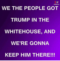 America, Memes, and Trump: AMERICA  WE THE PEOPLE GOT  TRUMP IN THE  WHITEHOUSE, AND  WE'RE GONNA  KEEP HIM THERE!!!