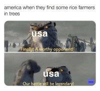Usa Memes: america when they find some rice farmers  in trees  usa  Finally! A worthy opponent  usa  MEMES  Our battle will be legendary