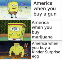 America, Tumblr, and Blog: America  when vou  buy a gun  America  when you  buy  mariiuana  America when  you buy a  Kinder Surprise  egg twitblr:  This is America